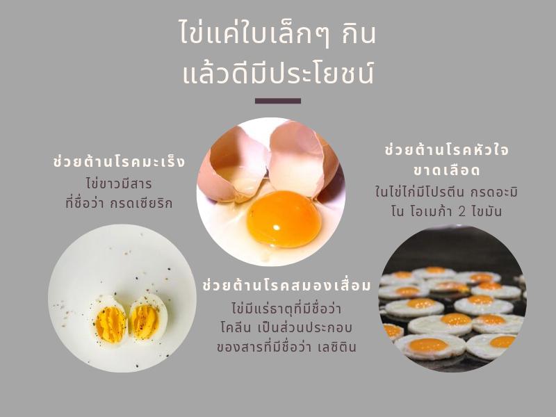 ไข่ต้านโรค กินแล้วดีมีประโยชน์ 01